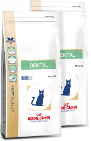 Royal Canin Dental DSO29 Feline