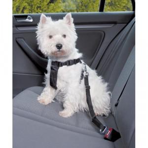 Sikkerhedssele til hunde