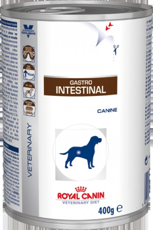 Royal Canin Gastro Intestinal hund á 400 g
