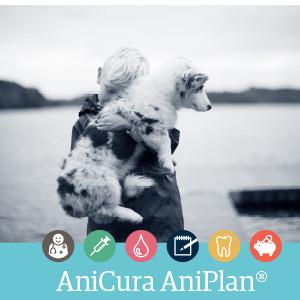 aniplan hund