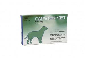 capstar - hund