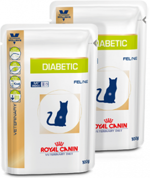 Royal Canin Diabetic kat 12 x 100 g