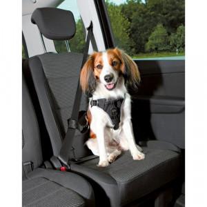 dog protect sikkerhedssele