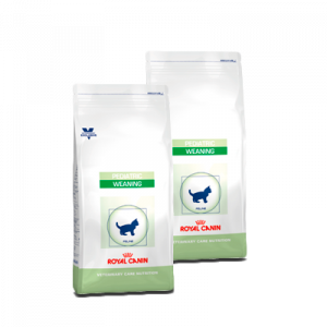 Royal Canin Pediatric growth, 4 kg